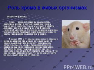 Роль хрома в живых организмах Важные факты:Хром — один из биогенных элементов, п