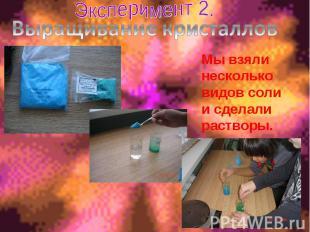 Эксперимент 2. Выращивание кристалловМы взяли несколько видов соли и сделали рас