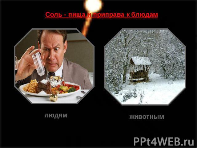 Соль - пища и приправа к блюдам
