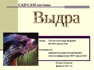 Выдра Автор: Хмелев Александр Игоревич9В МОУ школа №54Руководитель:Дарьина Екат