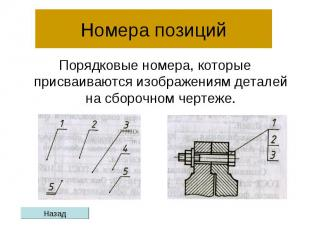 Номера позиций Порядковые номера, которые присваиваются изображениям деталей на