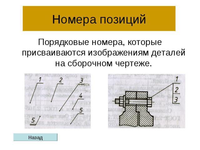 Номера позиций Порядковые номера, которые присваиваются изображениям деталей на сборочном чертеже.