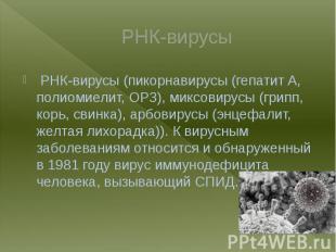 РНК-вирусы РНК-вирусы (пикорнавирусы (гепатит A, полиомиелит, ОРЗ), миксовирусы