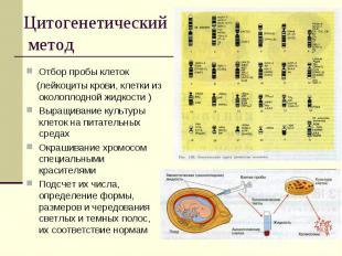 Цитогенетический метод Отбор пробы клеток (лейкоциты крови, клетки из околоплодн