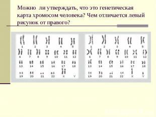 Можно ли утверждать, что это генетическая карта хромосом человека? Чем отличаетс