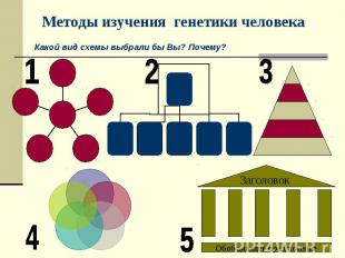 Методы изучения генетики человека Какой вид схемы выбрали бы Вы? Почему?