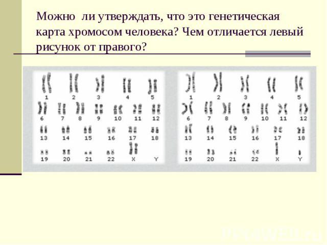 Можно ли утверждать, что это генетическая карта хромосом человека? Чем отличается левый рисунок от правого?