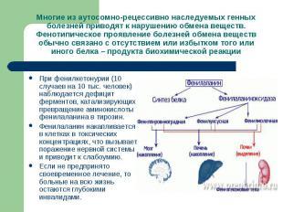Многие из аутосомно-рецессивно наследуемых генных болезней приводят к нарушению