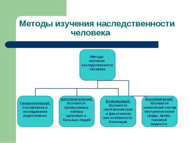 Методы изучения наследственности человека