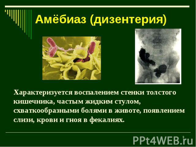 Амёбиаз (дизентерия) Характеризуется воспалением стенки толстого кишечника, частым жидким стулом, схваткообразными болями в животе, появлением слизи, крови и гноя в фекалиях.