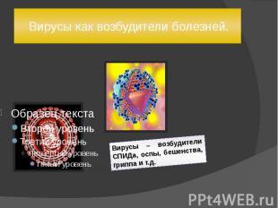 Вирусы как возбудители болезней. Вирусы – возбудители СПИДа, оспы, бешенства, гр