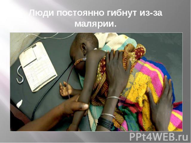 Люди постоянно гибнут из-за малярии.