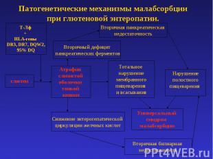 Патогенетические механизмы малабсорбции при глютеновой энтеропатии.