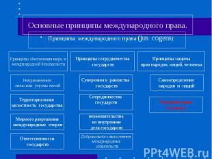 Основные принципы международного права.