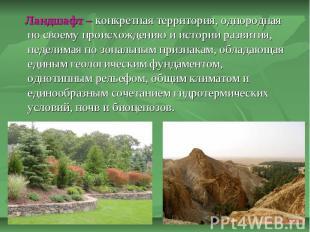 Ландшафт – конкретная территория, однородная по своему происхождению и истории р