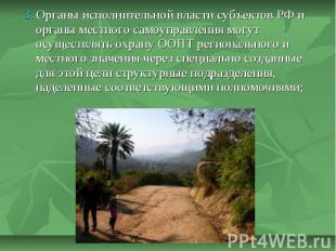 3. Органы исполнительной власти субъектов РФ и органы местного самоуправления мо