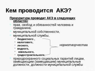Кем проводится АКЭ? Прокуратура проводит АКЭ в следующих областях:прав, свобод и