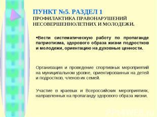 ПУНКТ №5. РАЗДЕЛ 1 ПРОФИЛАКТИКА ПРАВОНАРУШЕНИЙ НЕСОВЕРШЕННОЛЕТНИХ И МОЛОДЕЖИ. Ве