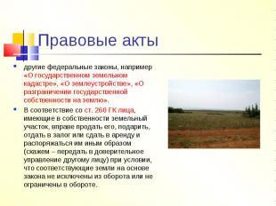 Правовые акты другие федеральные законы, например «О государственном земельном к