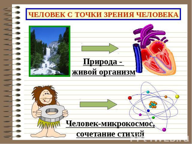 ЧЕЛОВЕК С ТОЧКИ ЗРЕНИЯ ЧЕЛОВЕКА Природа - живой организмЧеловек-микрокосмос,сочетание стихий