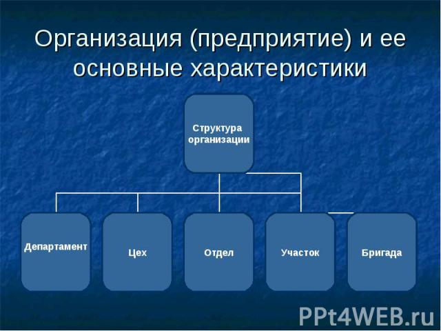 Организация (предприятие) и ее основные характеристики