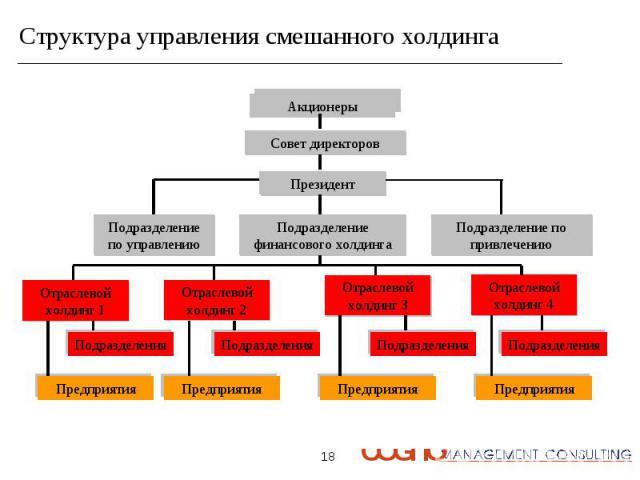 Структура управления смешанного холдинга