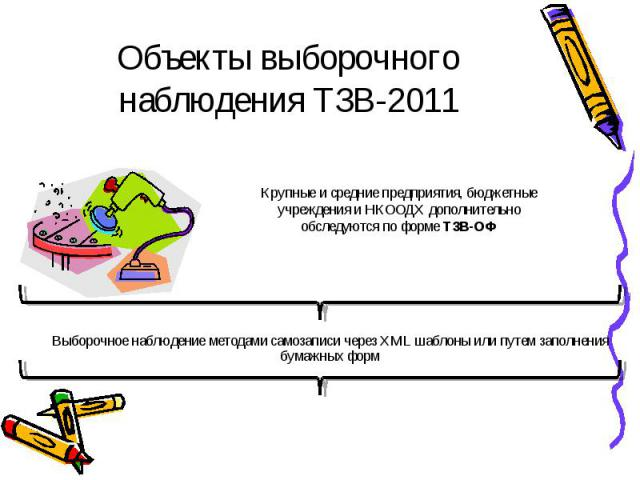 Объекты выборочного наблюдения ТЗВ-2011