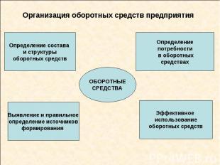 Организация оборотных средств предприятия