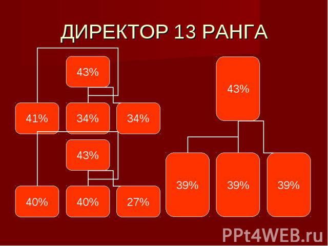 ДИРЕКТОР 13 РАНГА