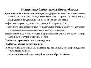 Бизнес-инкубатор города НовосибирскаЦель создания бизнес-инкубатора: поддержка и