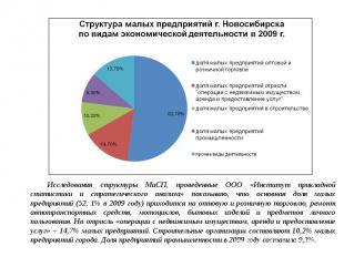 Исследования структуры МиСП, проведенные ООО «Институт прикладной статистики и с
