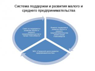 Система поддержки и развития малого и среднего предпринимательства