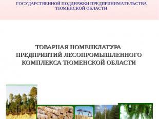РОССИЙСКАЯ ФЕДЕРАЦИЯПРАВИТЕЛЬСТВО ТЮМЕНСКОЙ ОБЛАСТИ ДЕПАРТАМЕНТ ИНВЕСТИЦИОННОЙ П