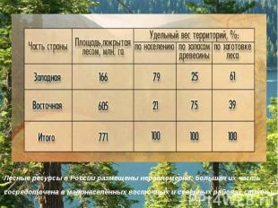 Лесные ресурсы в России размещены неравномерно: большая их часть сосредоточена в