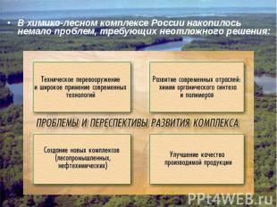 В химико-лесном комплексе России накопилось немало проблем, требующих неотложног