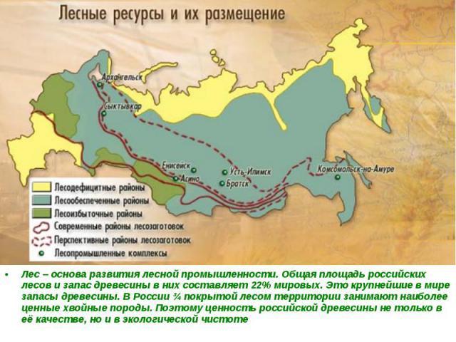 Лес – основа развития лесной промышленности. Общая площадь российских лесов и запас древесины в них составляет 22% мировых. Это крупнейшие в мире запасы древесины. В России ¾ покрытой лесом территории занимают наиболее ценные хвойные породы. Поэтому…