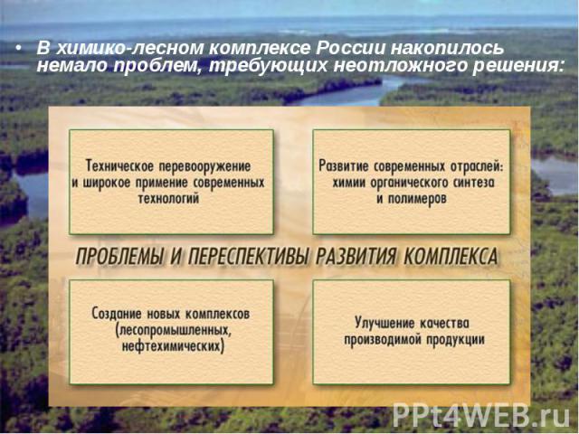 В химико-лесном комплексе России накопилось немало проблем, требующих неотложного решения:
