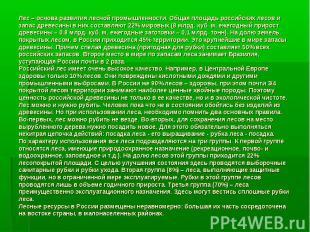 Лес – основа развития лесной промышленности. Общая площадь российских лесов и за