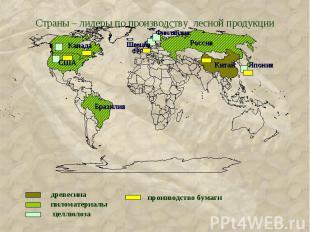 Страны – лидеры по производству лесной продукции