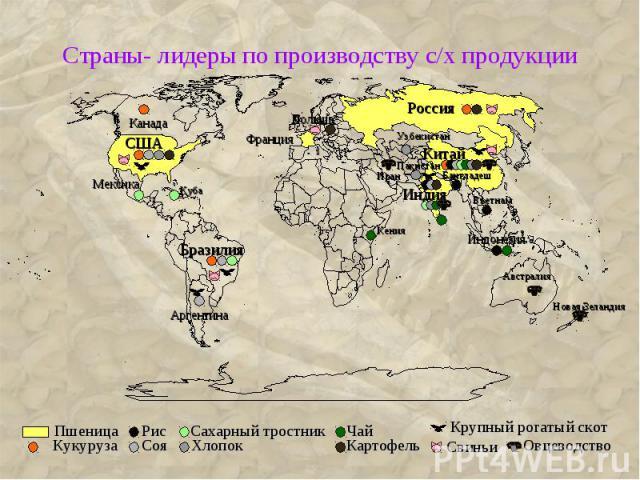 Страны- лидеры по производству с/х продукции
