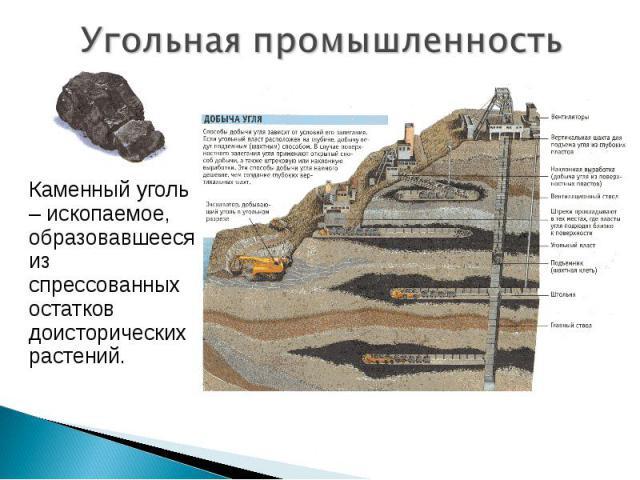 Угольная промышленность Каменный уголь – ископаемое, образовавшееся из спрессованных остатков доисторических растений.