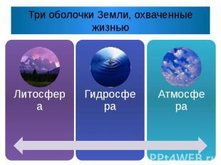 Три оболочки Земли, охваченные жизнью