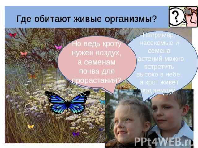 Где обитают живые организмы? Но ведь кроту нужен воздух, а семенам почва для прорастания?Например, насекомые и семена растений можно встретить высоко в небе, а крот живёт под землёй.