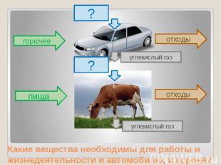Какие вещества необходимы для работы и жизнедеятельности и автомобилю, и корове?