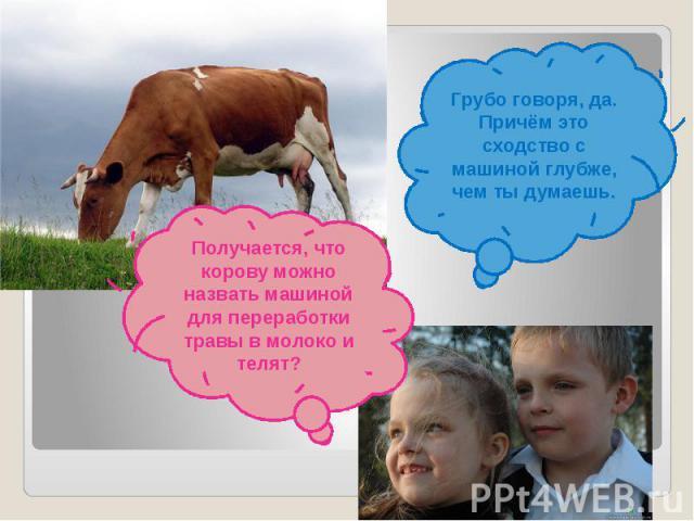 Грубо говоря, да. Причём это сходство с машиной глубже, чем ты думаешь.Получается, что корову можно назвать машиной для переработки травы в молоко и телят?