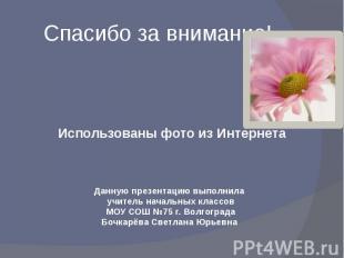 Спасибо за внимание! Использованы фото из ИнтернетаДанную презентацию выполнила