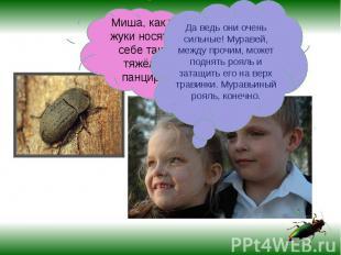 Миша, как же жуки носят на себе такой тяжёлый панцирь?Да ведь они очень сильные!
