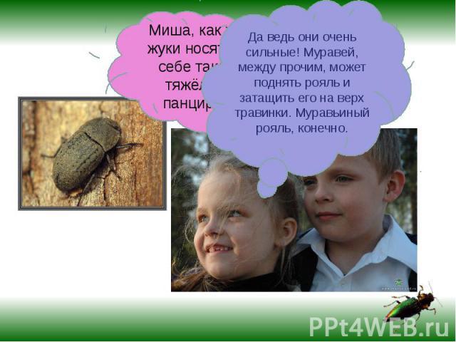 Миша, как же жуки носят на себе такой тяжёлый панцирь?Да ведь они очень сильные! Муравей, между прочим, может поднять рояль и затащить его на верх травинки. Муравьиный рояль, конечно.
