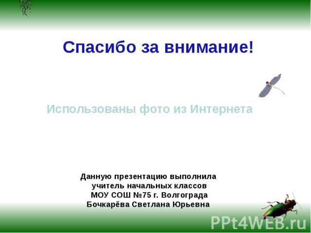 Спасибо за внимание! Использованы фото из ИнтернетаДанную презентацию выполнила учитель начальных классов МОУ СОШ №75 г. Волгограда Бочкарёва Светлана Юрьевна