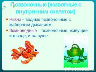 Позвоночные (животные с внутренним скелетом) Рыбы – водные позвоночные с жаберны